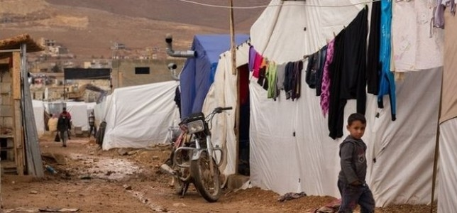 EU institutions must react to suspension of UN's food aid to Syrian refugeesimage