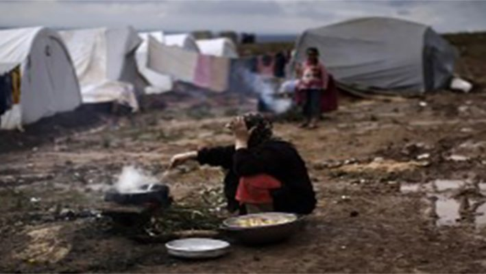 FAO: 13 million Syrian suffer food insecurityimage
