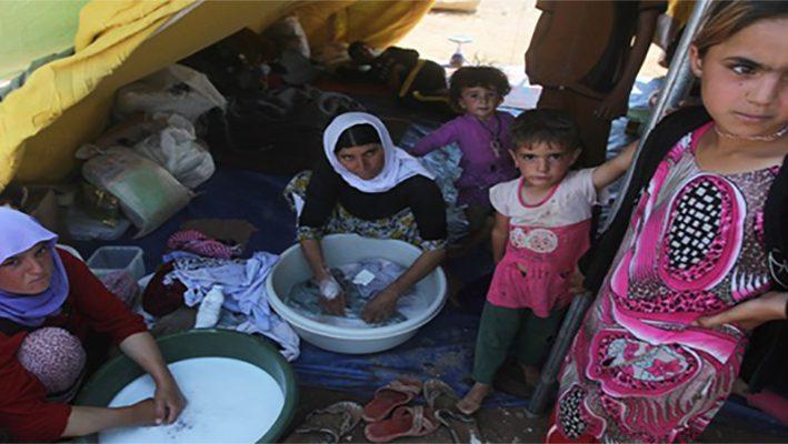 Senators called President Obama to establish humanitarian safe zones in Syriaimage