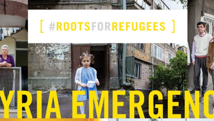 RootsForRefugees Campaign Kicks Off on Indiegogo.comimage
