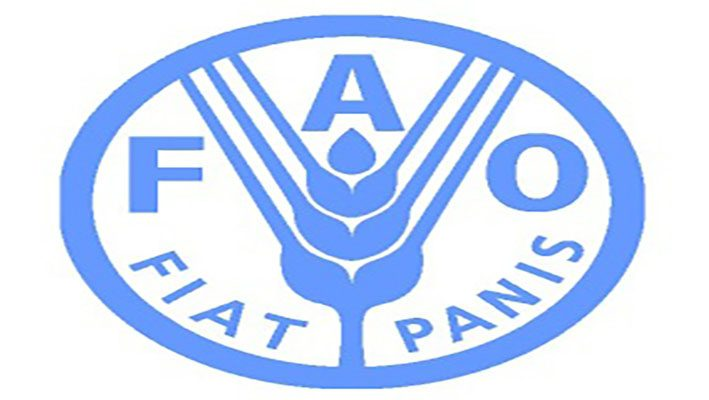 """"""" FAO """": 13.6 million Syrians are in """" urgent need """" of food aidimage"""